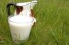 Пастеризация и ультрапастеризация молока